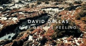 David Dallas – Ever Get The Feeling (Official Video)