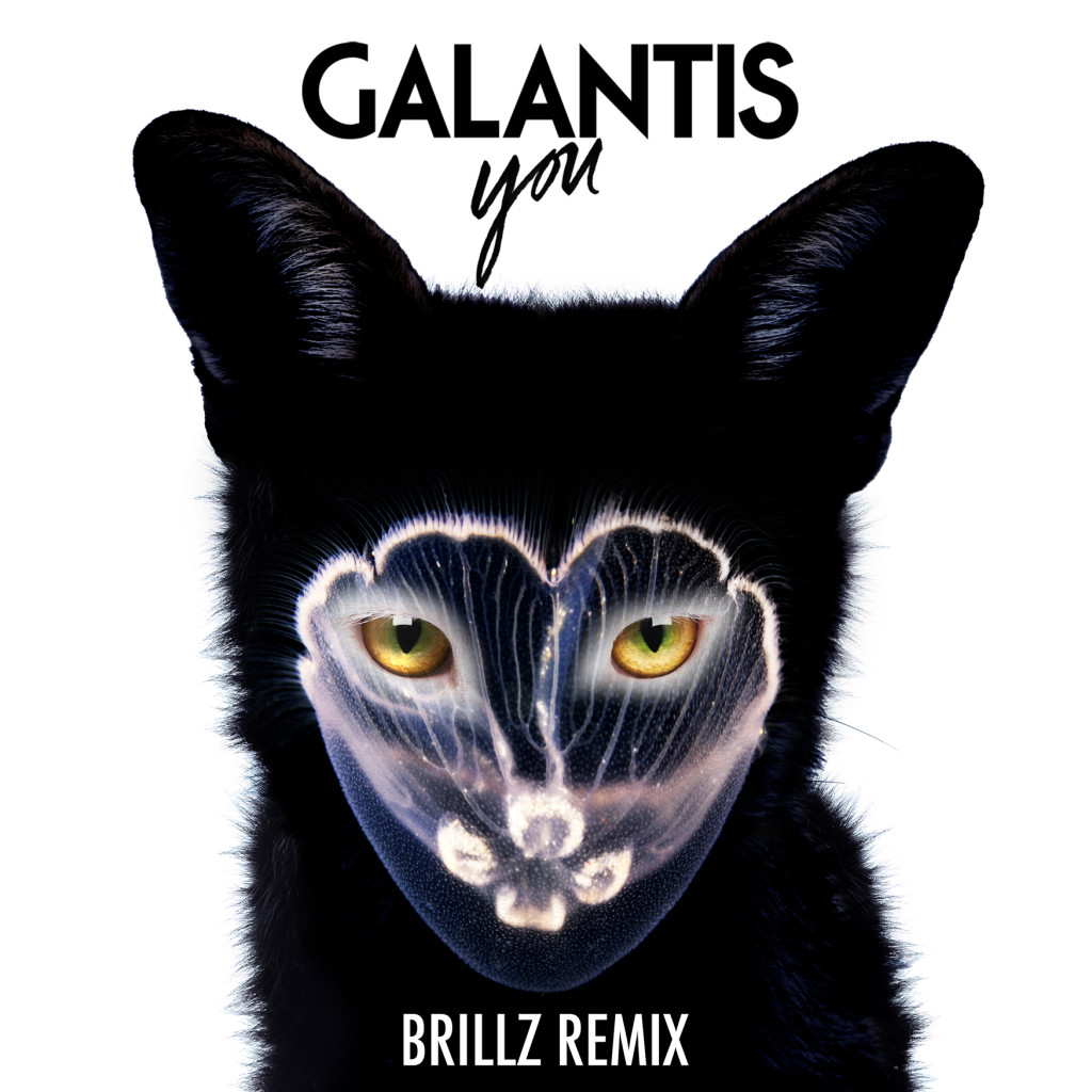 Galantis - You (Brillz Remix)