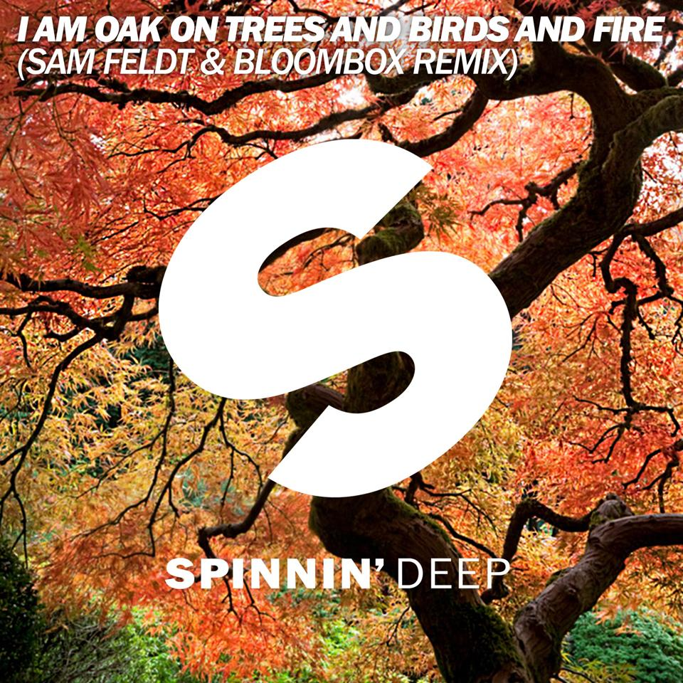 I Am Oak - On Trees & Birds & Fire (Sam Feldt & Bloombox Remix)