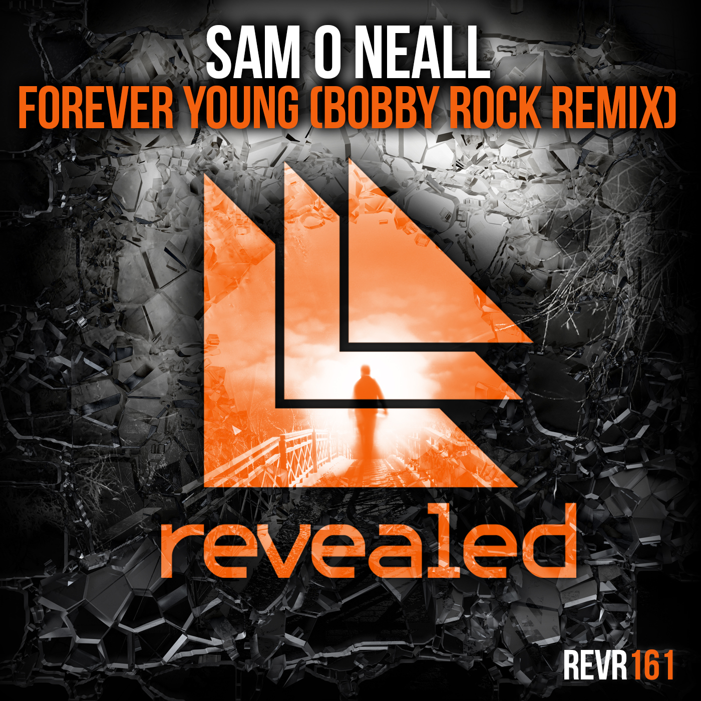 Forever Young Bobby Rock Remix Sam